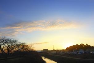 小川と冬木立の朝の写真素材 [FYI04792888]