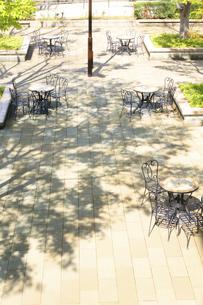 公園の日溜まりの写真素材 [FYI04792898]
