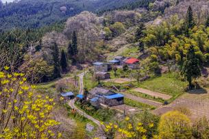 山間の田舎の春の写真素材 [FYI04792972]