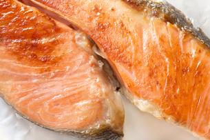 焼き鮭 サケ 鮭の塩焼きの写真素材 [FYI04793006]