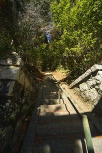 神社石段の写真素材 [FYI04793010]