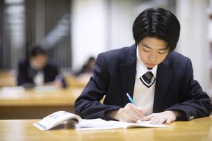 勉強する男子高校生の写真素材 [FYI04793112]