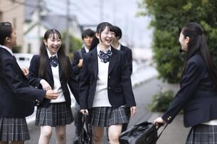 仲良く登校する高校生の写真素材 [FYI04793177]