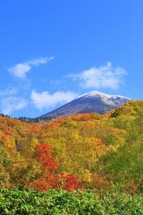 酸ヶ湯の紅葉と八甲田山の写真素材 [FYI04793319]
