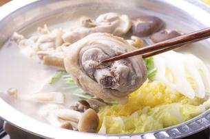 鶏の水炊きの写真素材 [FYI04793585]