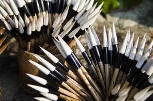 筆の乾燥風景の写真素材 [FYI04793899]