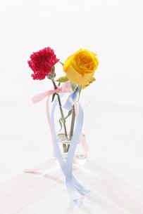 カーネーションと黄色い薔薇の写真素材 [FYI04794015]