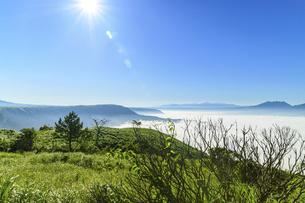 高原植物 阿蘇山(阿蘇五岳)美しい空と雲海の写真素材 [FYI04794130]