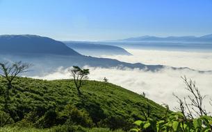 高原植物 阿蘇山(阿蘇五岳)美しい空と雲海の写真素材 [FYI04794134]