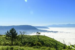 高原植物 阿蘇山(阿蘇五岳)美しい空と雲海の写真素材 [FYI04794135]