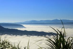 高原植物 阿蘇山(阿蘇五岳)美しい空と雲海の写真素材 [FYI04794178]