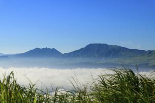 高原植物 阿蘇山(阿蘇五岳)美しい空と雲海の写真素材 [FYI04794201]