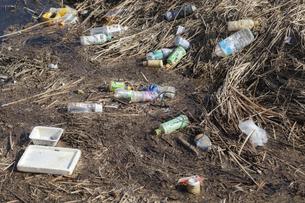 川岸に捨てられたペットボトルなどのプラスチックごみの写真素材 [FYI04794597]