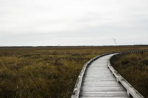 釧路湿原の中をハイキングできる木道の風景の写真素材 [FYI04794628]