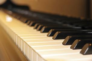 ピアノの鍵盤の写真素材 [FYI04794692]