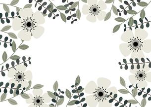 白い花と植物のフレーム イラストのイラスト素材 [FYI04794846]