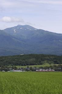 鳥海山の麓を走る羽越本線の列車の写真素材 [FYI04794883]