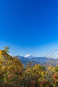 高尾山山頂から望む富士山の写真素材 [FYI04795081]