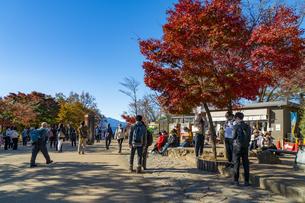 紅葉する高尾山の写真素材 [FYI04795120]