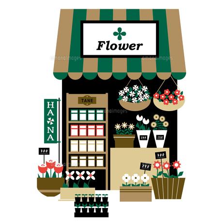 小さくてかわいい花屋さんの店先のイラスト素材 [FYI04795314]