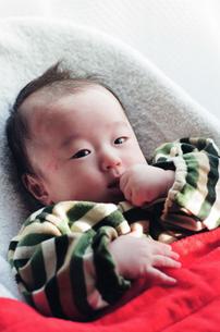 赤ちゃんの写真素材 [FYI04795383]