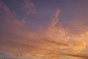 都会の空に広がる夕焼け雲の写真素材 [FYI04795523]