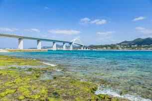 エメラルドグリーンの海に架かる瀬底大橋の写真素材 [FYI04795782]
