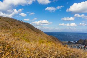 龍飛崎と津軽海峡の写真素材 [FYI04795812]