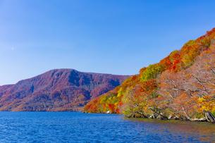 十和田湖畔の紅葉の写真素材 [FYI04795846]