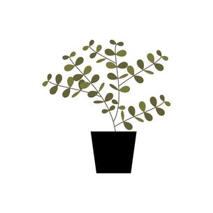 オリーブの木 植木鉢 イラストのイラスト素材 [FYI04795936]