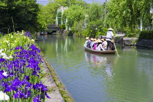 初夏の柳川下りの写真素材 [FYI04795950]