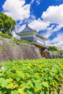 御楼門と鶴丸城跡の写真素材 [FYI04795970]