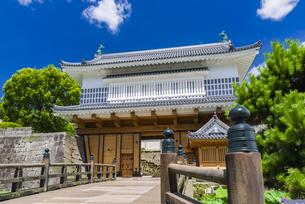 御楼門と鶴丸城跡の写真素材 [FYI04795971]