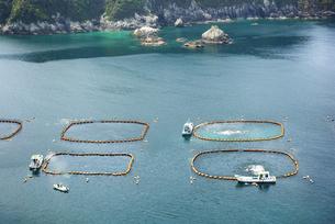 坊津港のマグロいけすの写真素材 [FYI04795976]