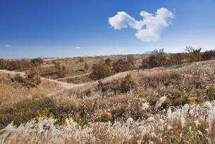 押戸石の丘から望む阿蘇の草原の写真素材 [FYI04795992]