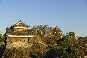 熊本城(小天守閣・大天守閣・宇土櫓)二の丸広場からの風景の写真素材 [FYI04796064]