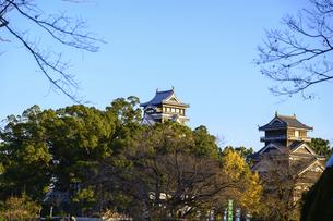 熊本城(小天守閣・大天守閣・宇土櫓)二の丸広場からの風景の写真素材 [FYI04796079]