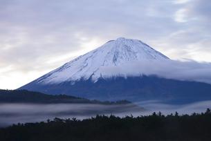山梨県 西湖より夜明けの富士山の写真素材 [FYI04796171]
