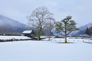 冬の北陸 一乗谷朝倉氏遺跡の雪景色の写真素材 [FYI04796408]