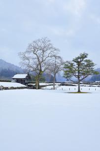 冬の北陸 一乗谷朝倉氏遺跡の雪景色の写真素材 [FYI04796411]