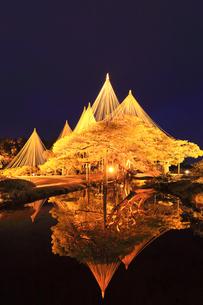北陸金沢 兼六園のライトアップ冬の段の写真素材 [FYI04796592]