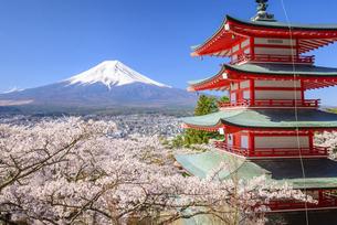 山梨県 春の新倉山浅間公園より富士山の写真素材 [FYI04796773]