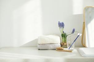 洗面所に置かれたタオルと歯ブラシの写真素材 [FYI04796777]