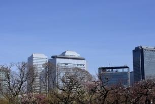 大阪城公園から大阪ビジネスパークの写真素材 [FYI04797030]