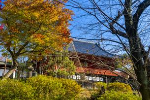 東京都 紅葉する上野公園 清水観音堂の写真素材 [FYI04797256]