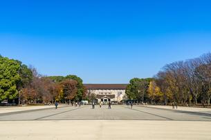 東京都 紅葉する上野公園 東京国立博物館の写真素材 [FYI04797261]