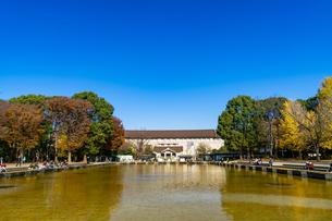 東京都 紅葉する上野公園 東京国立博物館の写真素材 [FYI04797266]
