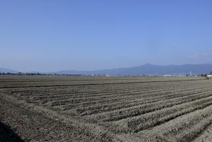 守山,青空の田園風景の写真素材 [FYI04797605]