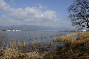 守山,琵琶湖湖畔から琵琶湖大橋の写真素材 [FYI04797609]