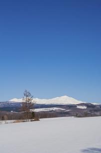 春の残雪の畑と雪山 大雪山旭岳の写真素材 [FYI04797728]
